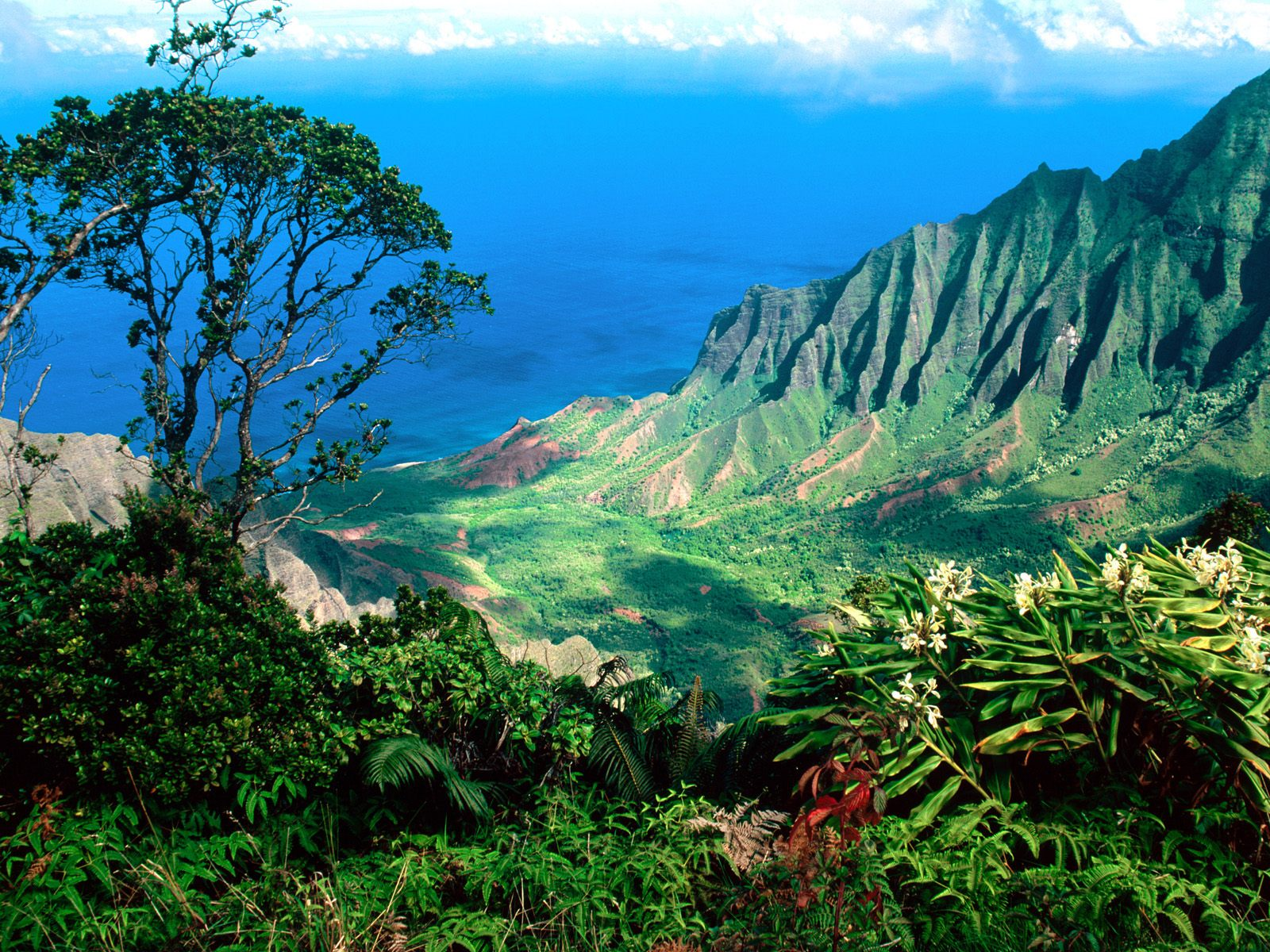Planning your holiday in hawaii