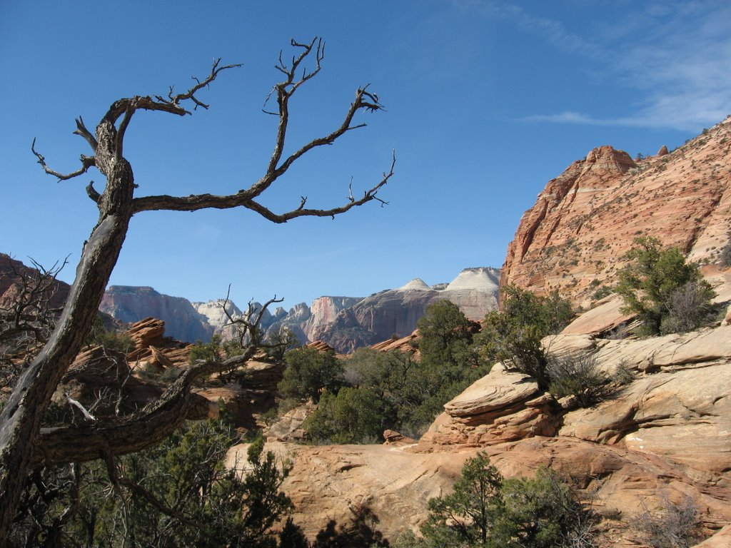 The Mt. Zion National Park
